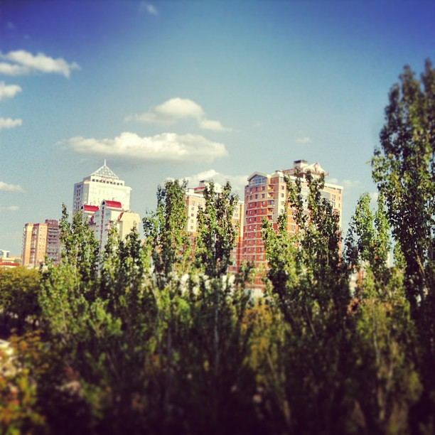 #donetsk #ukraine #sun #sky #day #summer #trees #green #blu #bighouse #beautiful