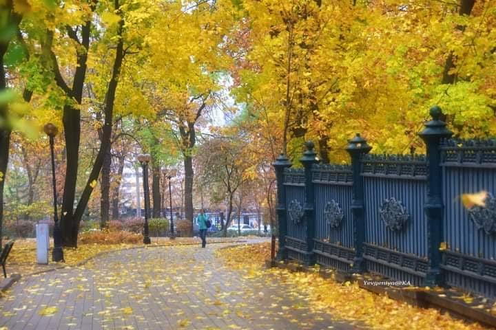 """""""Яркое, осеннее #утро, предпоследнего дня октября. Спасибо, осень, за чудесные дни и красоту :)"""", - пишет #автор #фото Евгени..."""