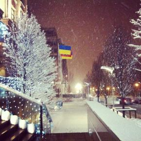 Первый заснеженный день  в Донецке. #winter #snow #hcdonbass #cool #photo #pictures #beautiful #nice #newyear #donetsk #ukrai...