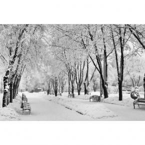 Хоть я и не очень люблю это время года, но не радовать глаз оно никак не может :) #зима #снег #пейзаж #winter #snow #nature #...