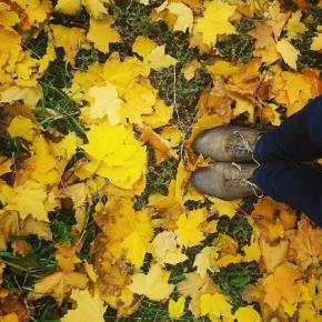вот такую осень я люблю #осень #листья #тепло #ботиночки #туфли #хорошаяпогода #отличныйдень #погода #fall #autumn #weather #...